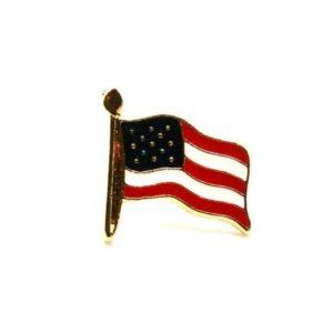 Small American Flag Pin