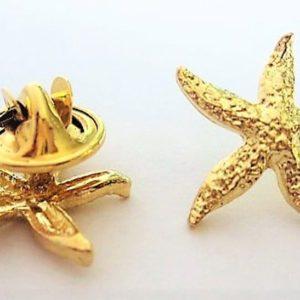 """Starfish Pin, Teaching about """"MakingA Difference"""""""